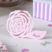 Picture of Frills & Spills - Place Card - Pink