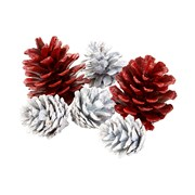 Picture of Botanical Christmas - Pine Cone Scatter