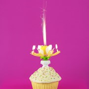 Picture of Cake Central - Show Stopper Yellow (Flower Fountain)