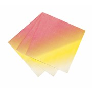 Picture of Floral Fiesta - Napkin