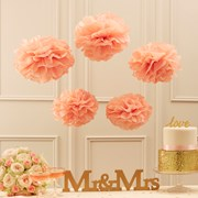Picture of Pastel Perfection - Tissue Paper Pom Poms - Pastel Pink