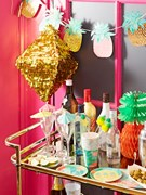 Picture for Adult Party category